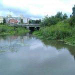 """Łyna zalewa olsztyńskie ogrody działkowe. """"Rzeka od lat jest zaniedbana"""""""