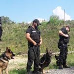 Najlepsi policjanci i ich czworonożni podopieczni pokazali, co potrafią. Wyjątkowy pokaz w Ostródzie