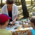 Dziś Wielki Dzień Pszczół. W olsztyneckim skansenie każdy mógł zbudować własny ul