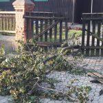 Uszkodzone dachy, połamane drzewa. Potężna wichura w Boleszynie