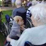 Samotność niejedno ma imię… mieszkańcy olsztyńskiego schroniska z wizytą u seniorów z DPS