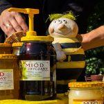 """""""Sezon był niełatwy, ale miód jest"""".  Jubileuszowy festyn  """"Pszczoły i miód"""" w Olsztynie"""