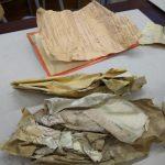 Specjaliści badają historyczne dokumenty znalezione w elbląskim Urzędzie Skarbowym