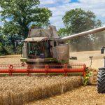Rolnicy dotknięci suszą otrzymają 1,5 mld złotych – zapowiada minister Ardanowski