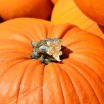 Jesienny rarytas, czyli dyniowe risotto. Zobacz przepis