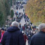 Wolontariusze zbierali pieniądze na rzecz zabytkowych olsztyńskich cmentarzy