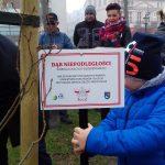 Ku czci Józefa Piłsudskiego i Ignacego Paderewskiego. W Parku Solidarności w Ełku zasadzono dęby niepodległości