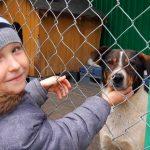 Schronisko dla Bezdomnych Zwierząt w Tomarynach świętuje 5 urodziny