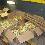 Chcieli przewieźć do Polski cztery tysiące paczek papierosów. Służby celne zatrzymały rosyjskich przemytników