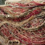 Z jeziora Orzysz znikną sieci rybackie
