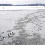 """""""Dla wielu wchodzenie na lód to fajna zabawa"""". Ratownicy apelują aby przy okazji zachować zdrowy rozsądek"""