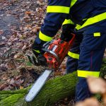 Kilkanaście interwencji strażaków w związku z silnym wiatrem. Synoptycy zalecają ostrożność i śledzenie komunikatów