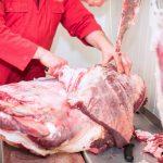 Trwają kontrole ubojni. Inspektorzy sprawdzają, czy na Warmii i Mazurach zabijano chore krowy