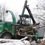 Nad Jeziorem Długim wycięto prawie 40 drzew. Miasto przekonuje: to była konieczność