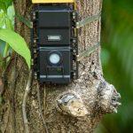 Specjalne kamery i czujniki dymu pomogą chronić elbląskie lasy przed pożarami