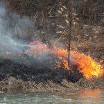 Warmińsko-mazurscy strażacy walczyli z pożarami traw. Ekolodzy apelują: wypalanie łąk jest bardzo szkodliwe dla środowiska