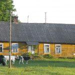 Eksperci z 13 ministerstw będą dyskutować w Olsztynie o przyszłości polskiej wsi