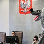 Łagodny wyrok dla wilka za usiłowanie zabójstwa. Bajkowy proces w prawdziwym sądzie