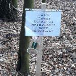 Powiat elbląski walczy z ASF-em. Specjalne zapory zapachowe mają odstraszać dziki