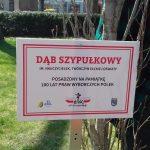 Patronami drzew sadzonych do tej pory w Ełku byli mężczyźni. Mieszkanki miasta postanowiły to zmienić