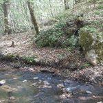 Wody Polskie zapowiadają: ponad 30 milionów złotych na regulację Srebrnego Potoku