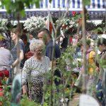 Z powodu koronawirusa odwołano wiosenne targi ogrodnicze w Olsztynie