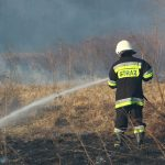 Dziesiątki strażaków gasiły minionej doby ponad 50 pożarów traw. Jedna osoba trafiła do szpitala