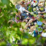 Ekolodzy apelują: nie zostawiajmy śmieci i sprzątajmy po sobie podczas majowych pikników