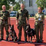 Na co dzień ochraniają polską granicę. Psy i ich przewodnicy spotkali się międzynarodowych zawodach na Litwie