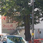 Kolejny atak na biuro poselskie Jerzego Wilka. Wandale wyrwali flagi i zniszczyli elewację budynku