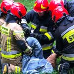 Uratowali sarnę, która utkwiła między elementami ogrodzenia. Akcję przeprowadził Eko Patrol i strażacy z Elbląga