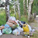 Wyrzucał śmieci do pobliskiego lasu. Rolnik z Młynar ukarany mandatem