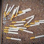 Funkcjonariusze IAS zatrzymali kobietę zajmującą się przemytem papierosów. Jej wiek zaskakuje