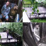 Niszczyli rowery miejskie i biletomaty. Policja publikuje wizerunki. Czy rozpoznajesz sprawców?