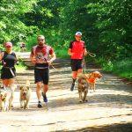 Biegają by wesprzeć olsztyńskie schronisko dla bezdomnych psów. W Olsztynie wystartowały charytatywne zawody Run Hau