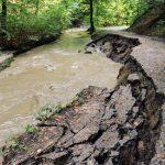 Jest szansa na odbudowę szlaków turystycznych w elbląskiej Bażantarni. Rozmowy o naprawie powodziowych szkód trwały 2 lata