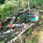 Nawałnica połamała drzewa, które są teraz groźne dla ludzi. W Nadleśnictwie Czerwony Dwór wprowadzono zakaz wstępu do lasu