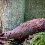 Elbląscy leśnicy ostrzegają przed niebezpiecznymi pamiątkami po II wojnie światowej