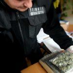 Podczas rutynowych patroli zatrzymano dwóch mężczyzn. Funkcjonariusze znaleźli przy nich marihuanę