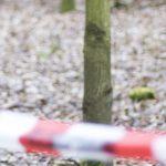 Nie żyje grzybiarz. Mężczyzny przez tydzień szukało ponad pięćdziesięciu policjantów