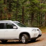 Nieprawidłowe parkowanie w lesie może grozić nawet 500-złotym mandatem. Gdzie możemy zostawić swój samochód?