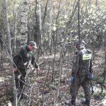 Kolejne niewybuchy znalezione w lesie. Grzybiarz odkrył pocisk artyleryjski i granaty