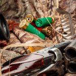 Mieszkaniec powiatu elbląskiego stanie przed sądem za nielegalne polowania w lasach pod Markusami