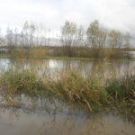 Na Zalewie Wiślanym i Żuławach wzrośnie poziom wód