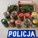 Trzymał w domu marihuanę o wartości 40 tysięcy złotych. 37-latek wpadł w ręce policji