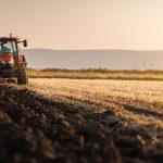 Około 6 tysięcy osób z Olsztyna skorzystało z ulgi i wykupiło grunty