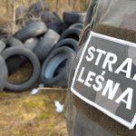 Plastikowe butelki, opony, a nawet… zepsute jajka. Ponad sto osób zatrzymanych za śmiecenie w olsztyńskich lasach