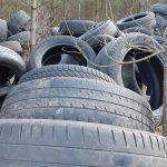 Ministerstwo Środowiska zaostrza kary za śmiecenie w lesie