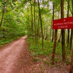 Nowa atrakcja turystyczna i edukacyjna w Olsztynie. Trasa ekospaceru będzie liczyła ponad 2,5 kilometra