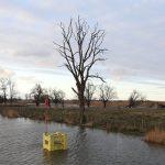 Poprawia się sytuacja hydrologiczna na Żuławach Elbląskich. Służby monitorują zagrożenie